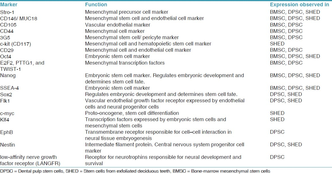 Table 2: Comparison of stem cell markers from dental pulp and mesenchymal cells from the bone marrow.<sup>[18],[19],[20],[21],[22],[23],[24],[25],[26],[27],[28],[29],[30],[31],[32],[33],[34],[35]</sup>