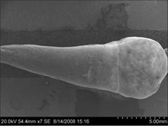 Figure 1: SEM photograph showing tooth surface after debonding (ARI score 0)