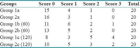 Table 2: Occlusal margin scores