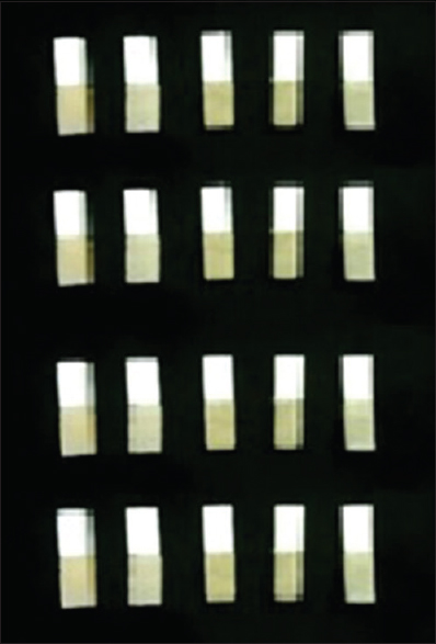 Figure 7: Zirconia bars luted with resin bars